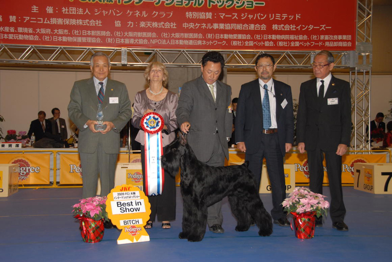 Beryl Judging Best in Show at the Japan Dog Festival, FCI Internationl Dog Show, December 12th & 13th, 2009