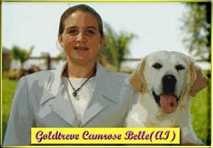 GOLDTREVE CAMROSE BELLE (AI)