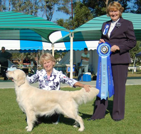 Pepa winning BIS at the GRC Show  May 2007