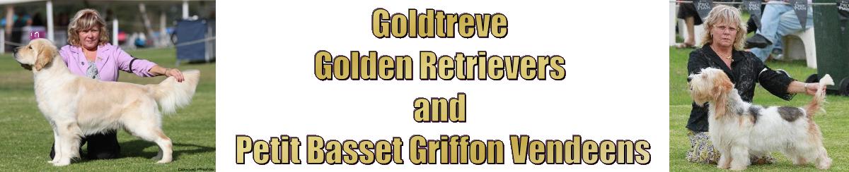 Goldtreve
